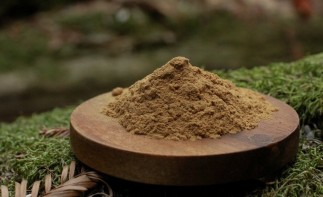 Eleuthero Siberian Ginseng Extract Powder Benefits