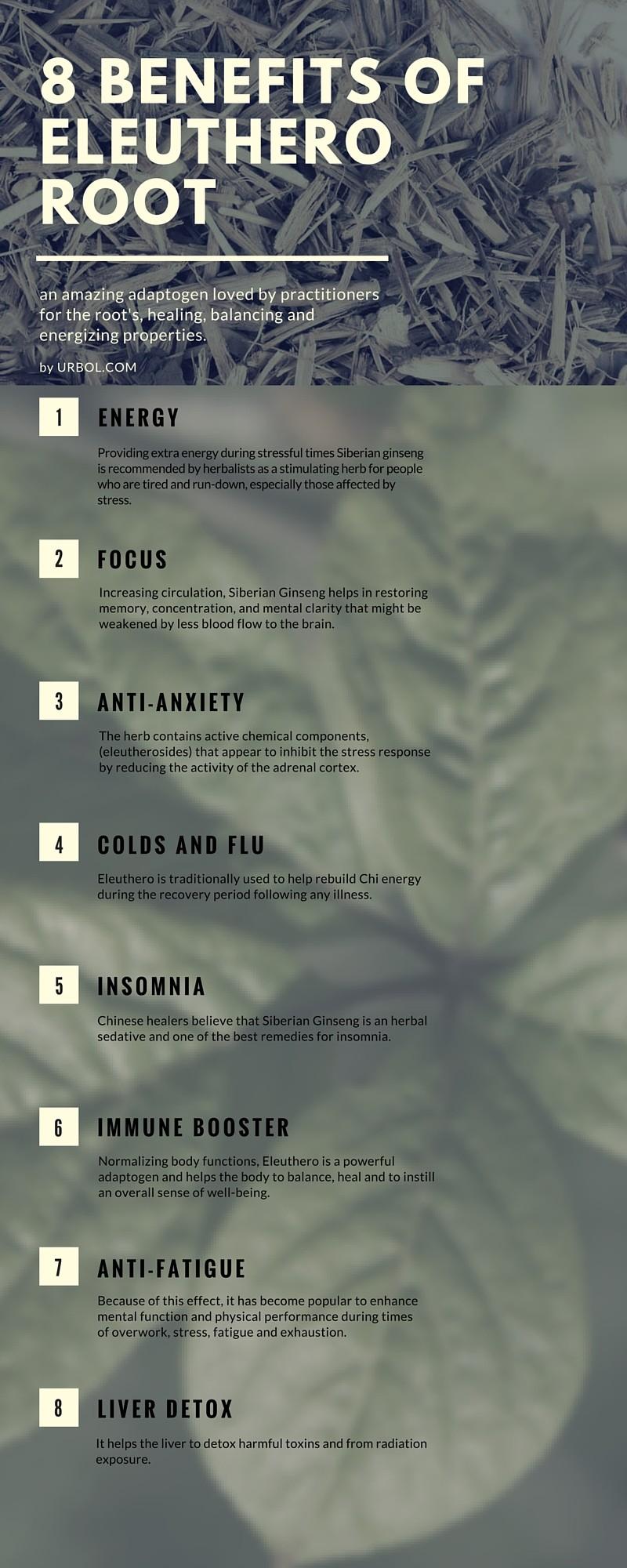 Eleuthero Root Infographic