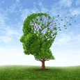 Memory Herbs