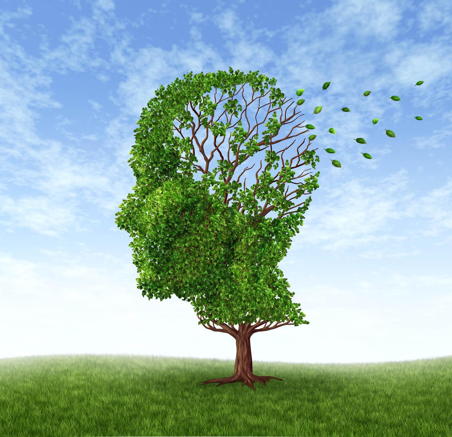 Can vitamins improve memory photo 3