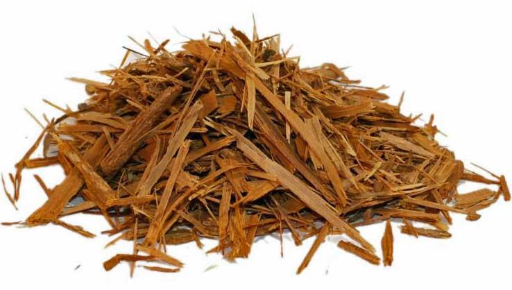 Catuaba Bark Benefits