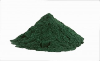 The wonders of Spirulina