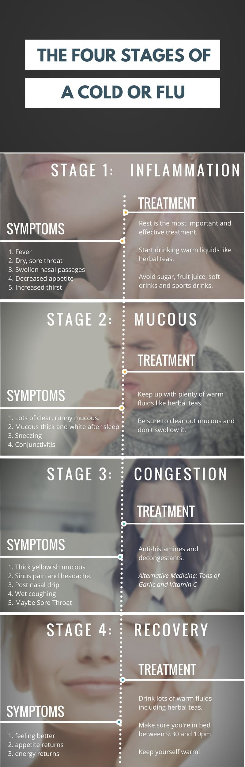 Stages of a cold infographic