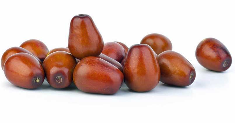 Jujube Fruit Benefits