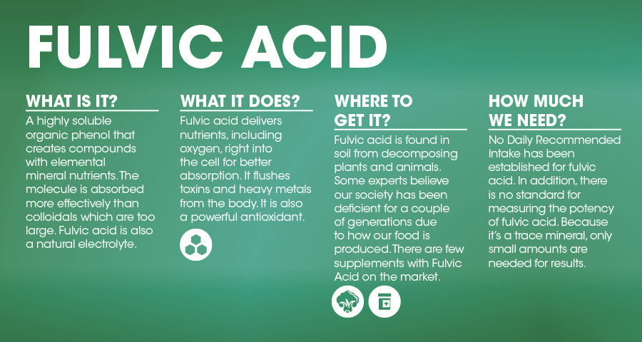 The Shilajit Fulvic Acid Myth