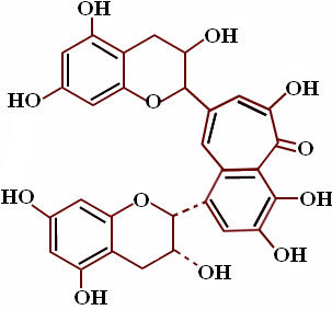 phenolic substances and polyphenols