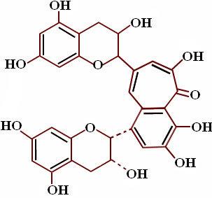 phenolic substances and polyphenols