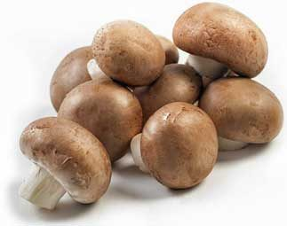 chestnut mushrooms agrocybe aegerita