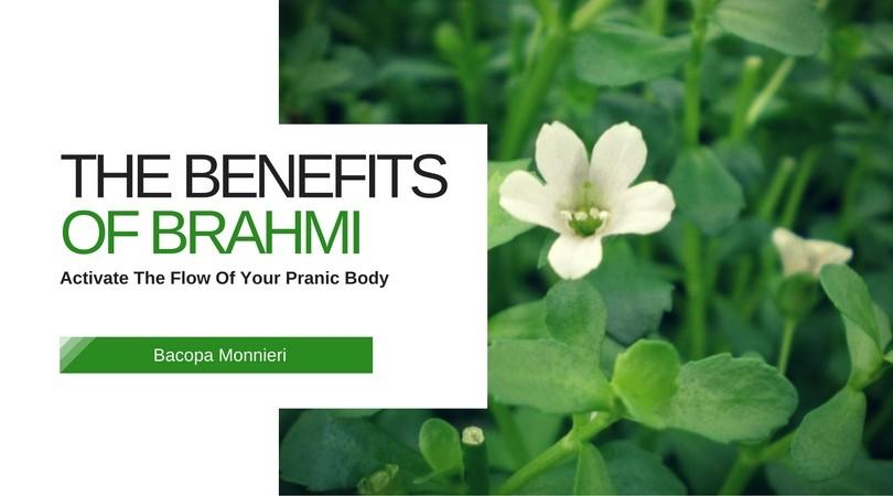 brahmi-benefits