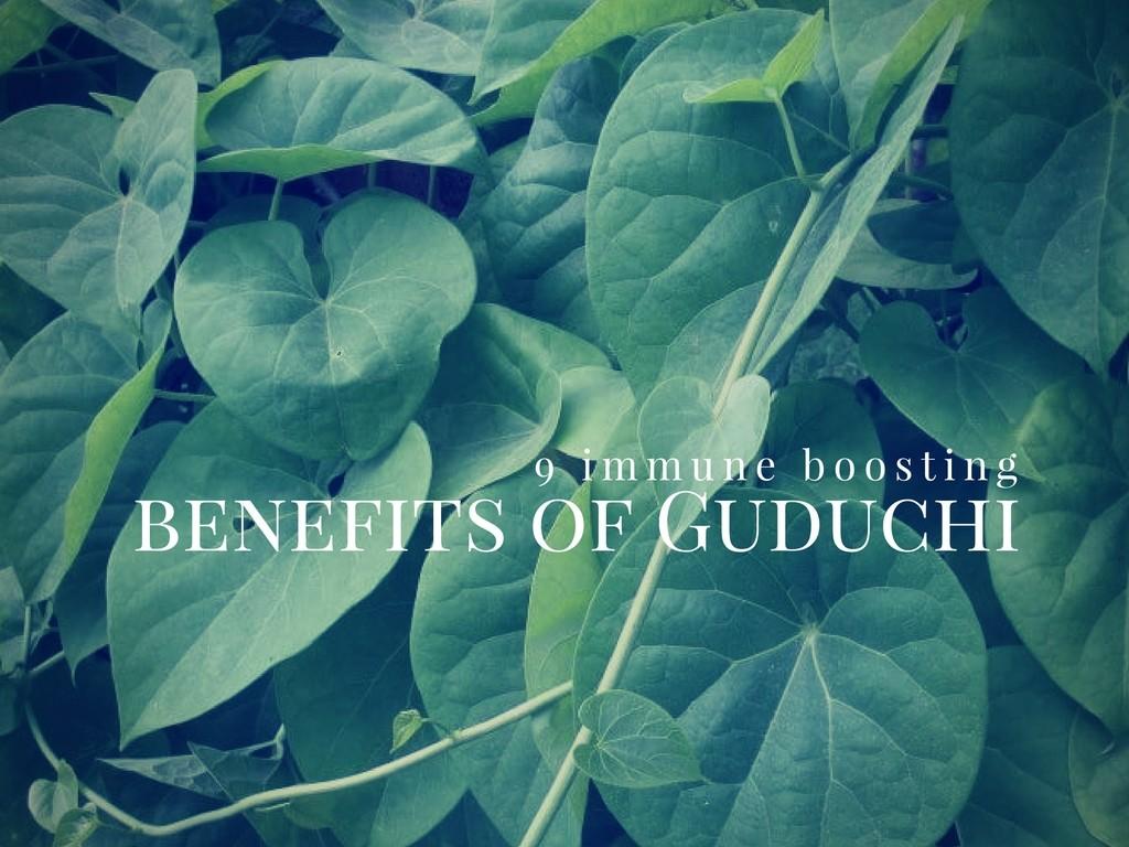 Guduchi
