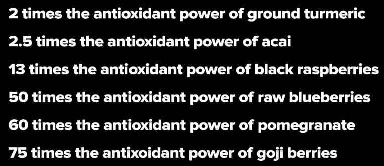 amla antioxidants