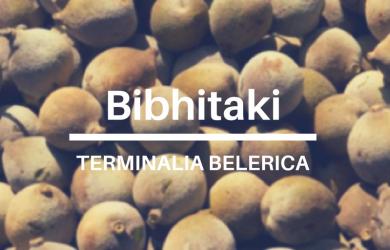 Terminalia-Belerica