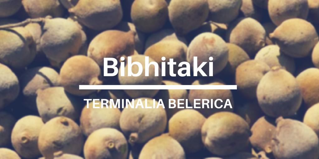 Terminalia Belerica Bibhitaki uses, health benefits and side effects