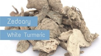 Zedoary: Health Benefits of White Turmeric [2019 Updates]