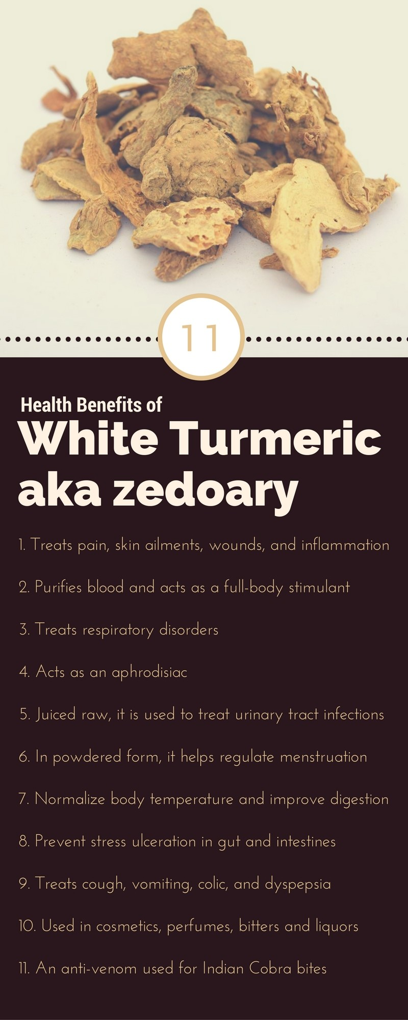 Zedoary benefits infographic