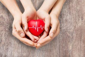 Health Benefits of Kudzu Root - Healthy heart