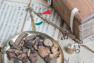 Health Benefits of Cistanche Tubulosa - Chinese medicine