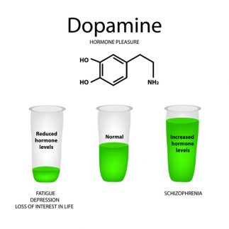 Natural Mood Stabilizers - Dopamine
