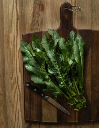 Health Benefits of Yellow Dock Root - Leaves on cutting board
