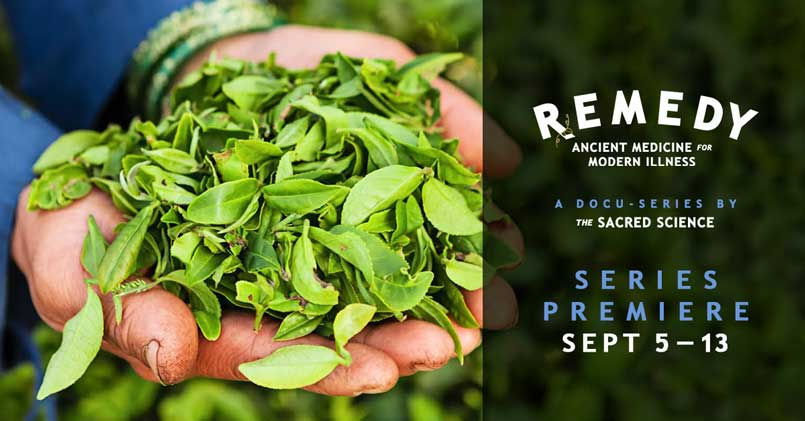 Remedy: Ancient Medicines For Modern Illness