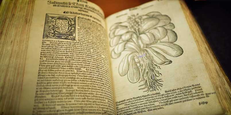 ancient books about medicinal herbs