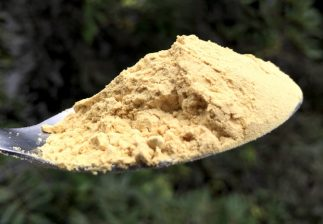 pine pollen powder lost empire herbs